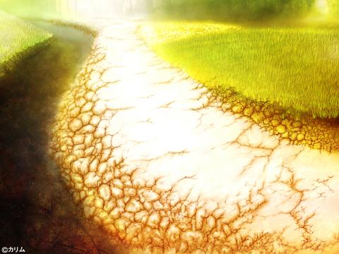 「風景画2014」08「川辺の小道 」制作03「芝&お花畑」.jpg
